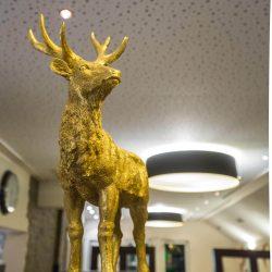 DalMaestro - Galerie Lokal 02